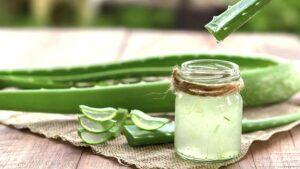 6 Amazing Aloe Vera Juice Health Benefits