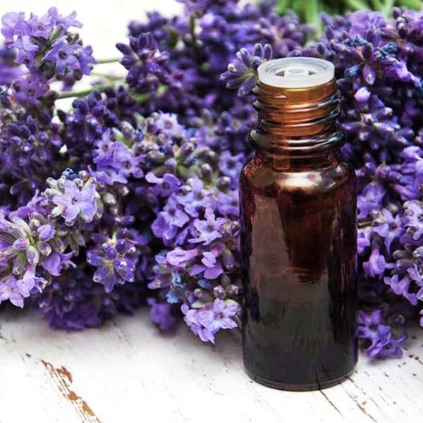 8 Amazing Benefits of Lavender Oil