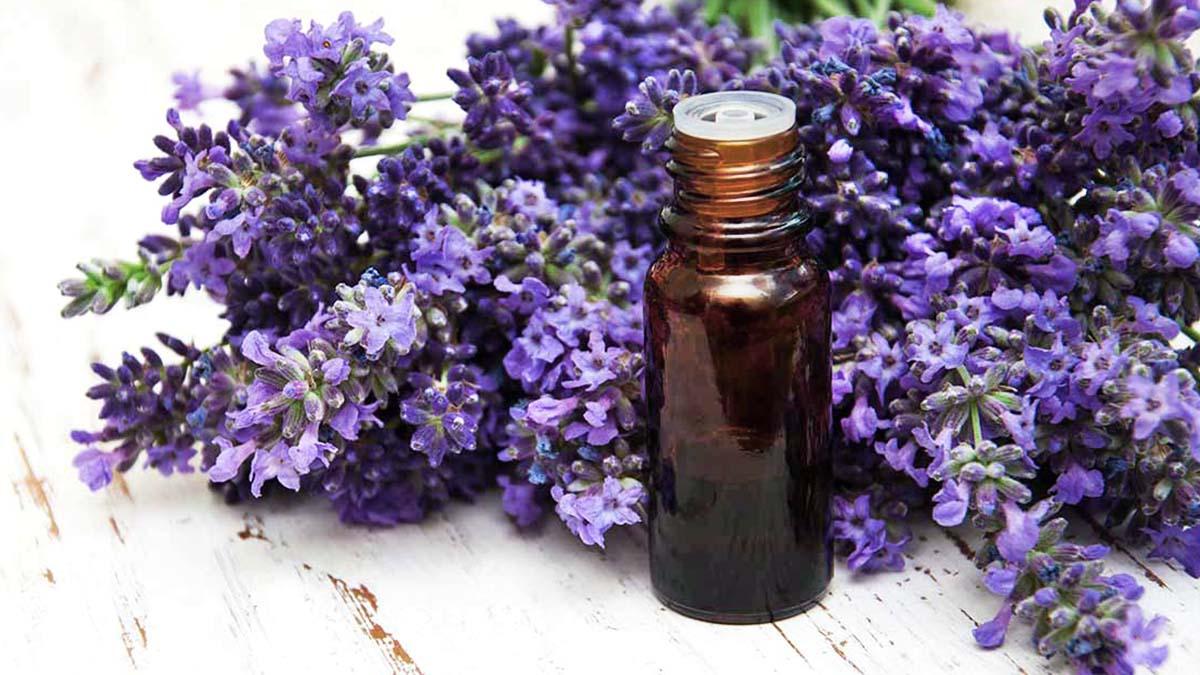 8 Amazing Benefits of Lavender Oil