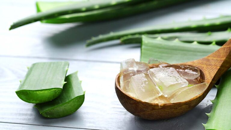 4 Effective Ways to Use Aloe Vera Gel for Hair