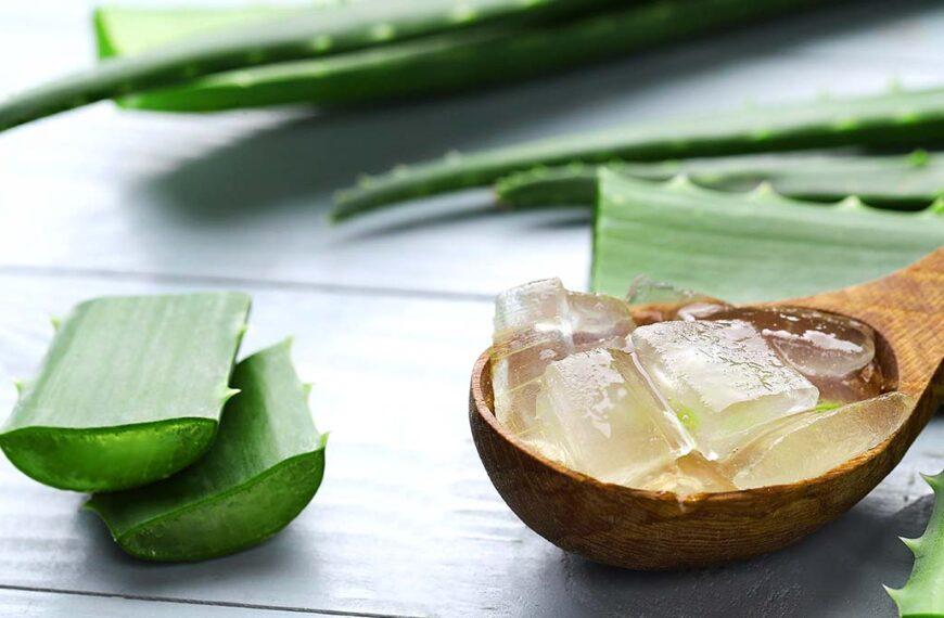 4 Effective Ways to Use Aloe Vera Gel for Hair