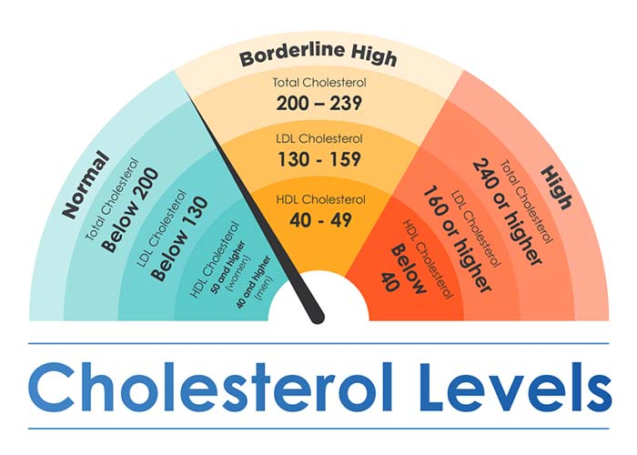 Maintaining Healthy Cholesterol